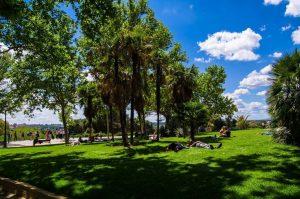 Temple of Debod Madrid gardens